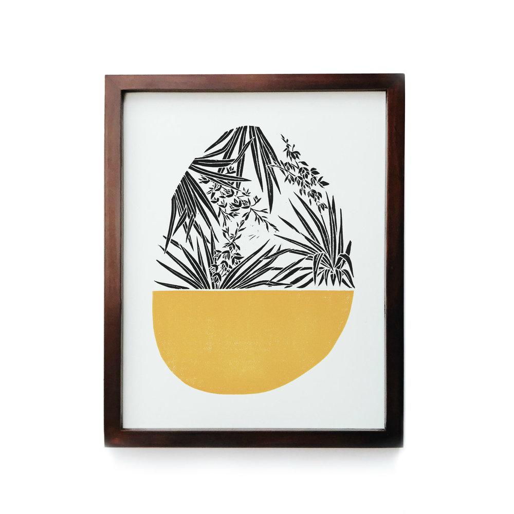 Yucca_Framed.jpg