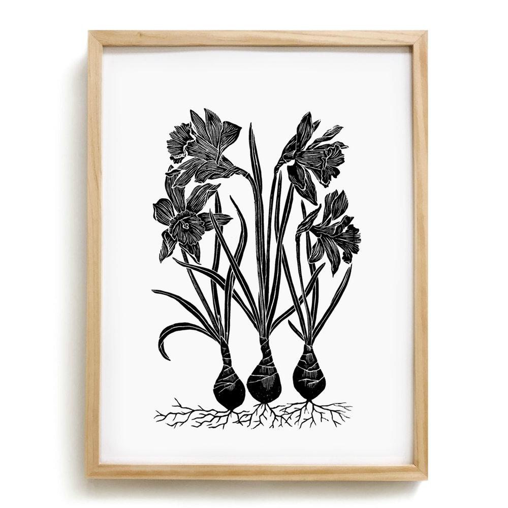 Daffodil - Framed.jpg