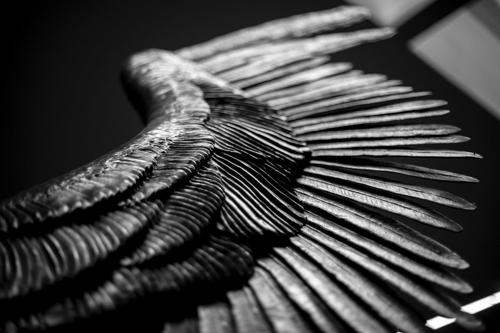 We All Have Wings, Jorge Marin Sculpture, Mexico City, 2014