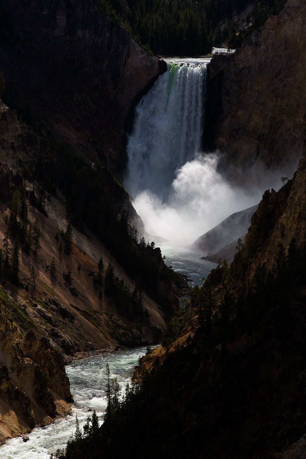 YELLOWSTONE // WY