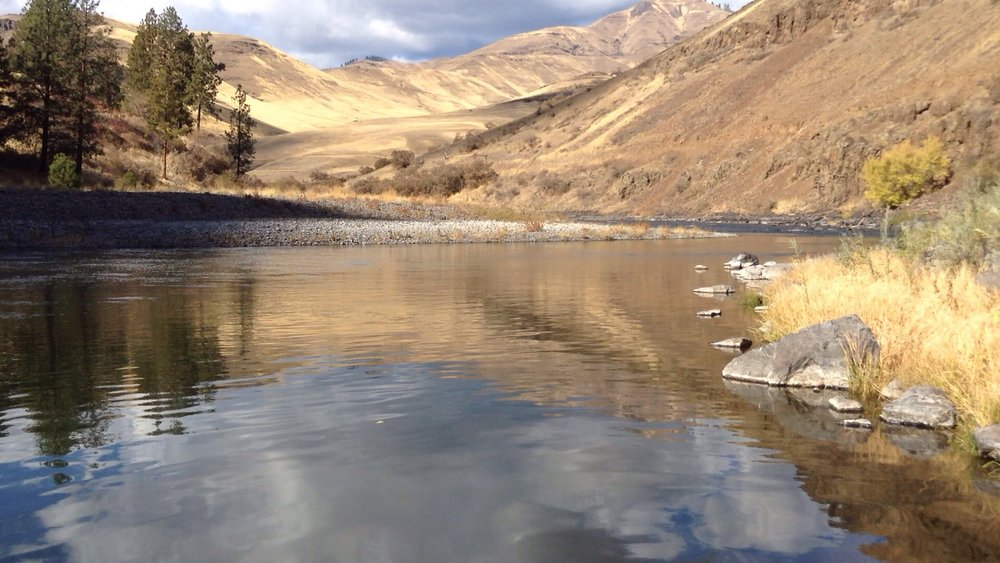 Riparian corridor of The Grande Ronde