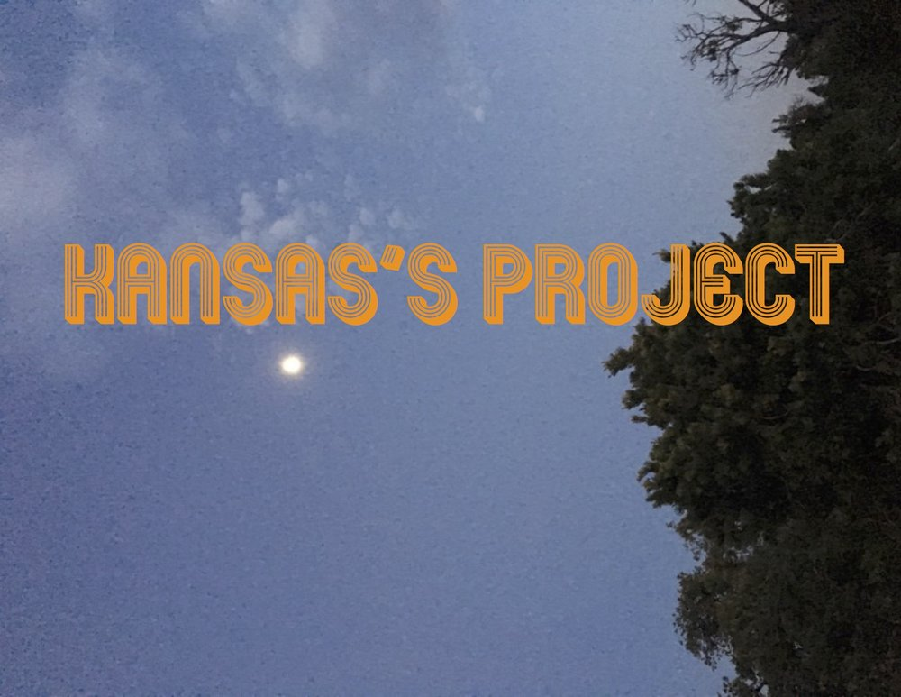 Kansas's project - opening card copy.jpg