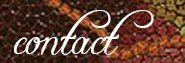 Contact Metta Yoga