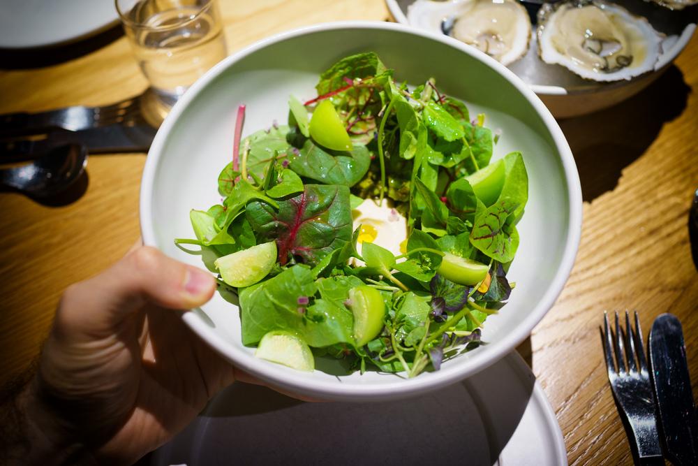 Nopal cactus salad, greens ($15)