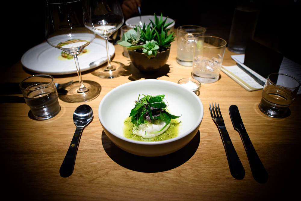 Burrata and weeds