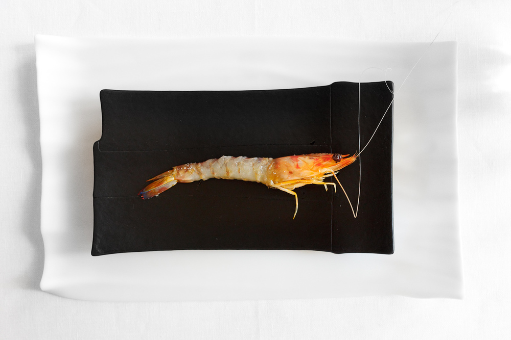 El Bulli, Spain - 12th Course: Boiled shrimp