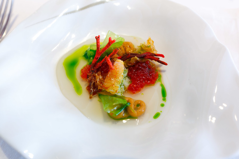 12th Course Coral