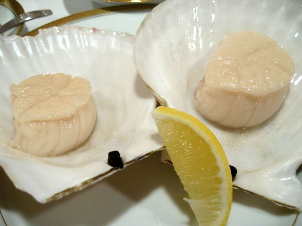 Scallops and Lemon
