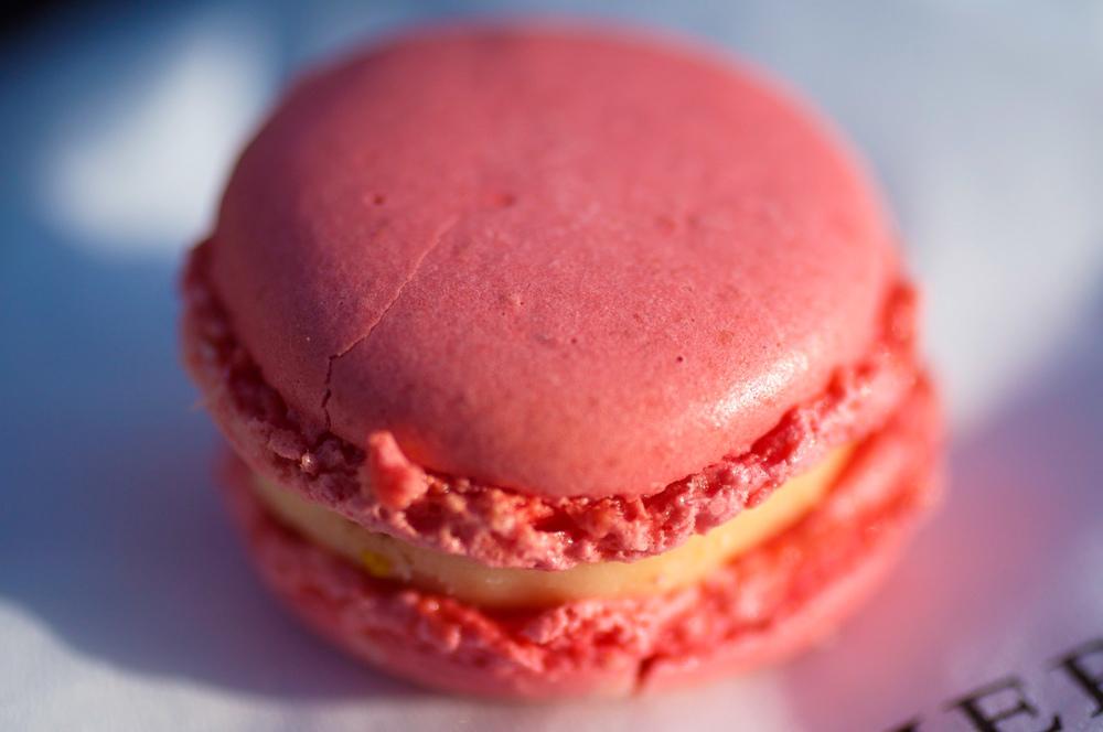 Rose - Biscuit macaron rose, crème aux pétales de rose
