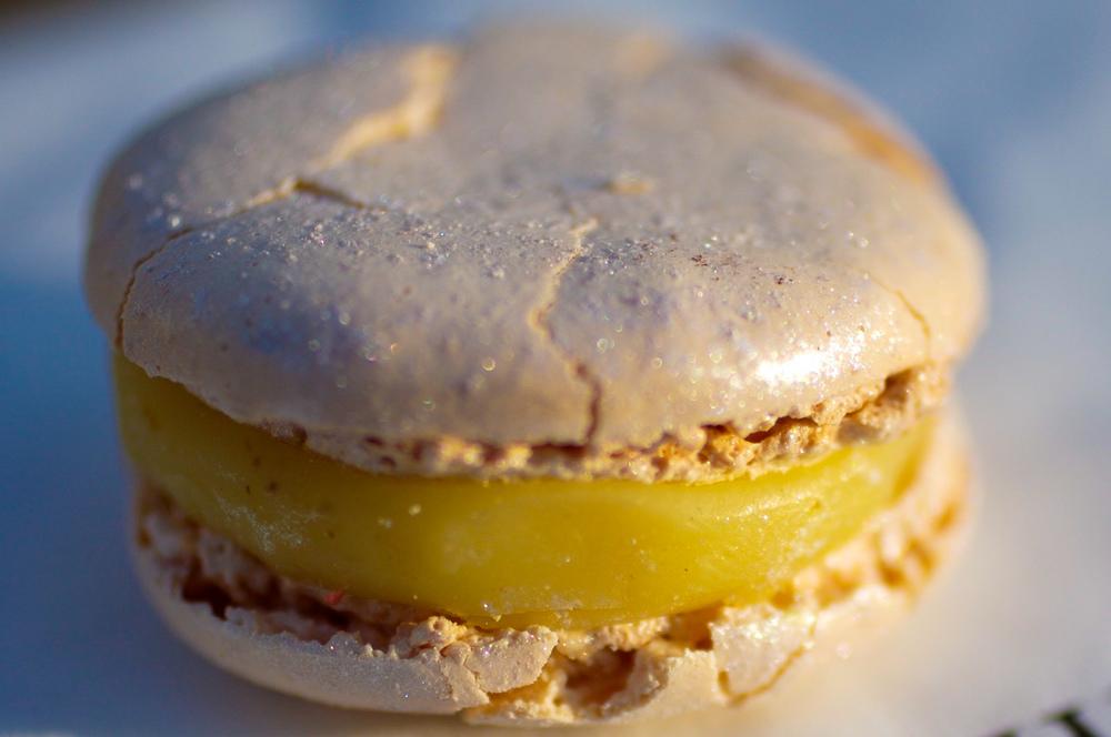 Truffe Blance & Noisette - biscuit macaron, éclats de noisettes du Piémont grillées, crème à la truffe