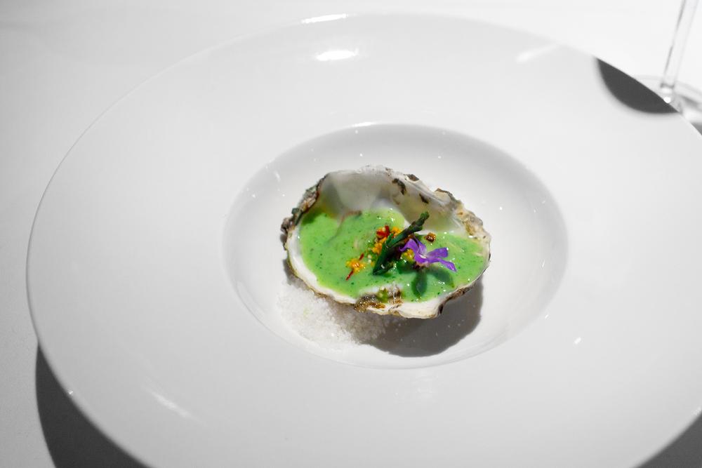 2nd Course: Ostión ahumado, puré de lima y elote, salsa verde, salicornia tatemada, flor de borraja, sal de celestún (Smoked oyster, lima bean purée with corn, green salsa, local flowers)