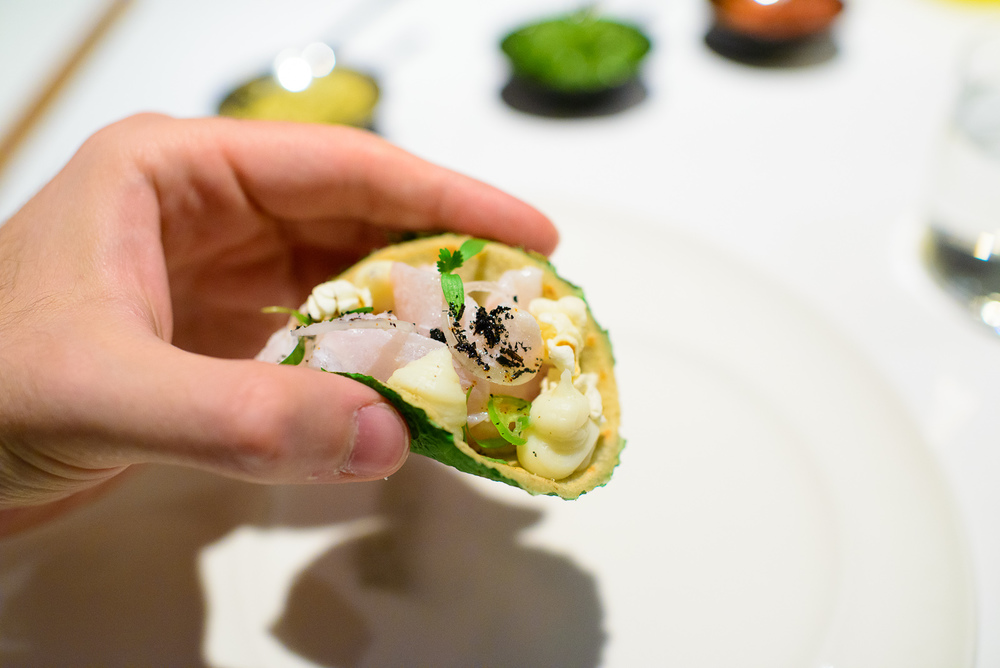 3rd Course: Taco de ceviche de robalo, tortilla de chayote y hoj