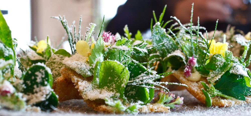 Noma - Amuse bouche - Toast, herbs, beurre noisette and vinegar, closeup