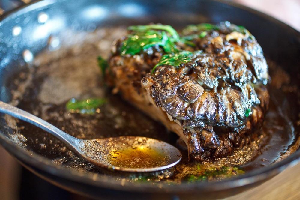 Noma - Local, wild mushroom (Pied de boeuf-Amador); Skate sauce, nasturtium, elderberry capers in pan