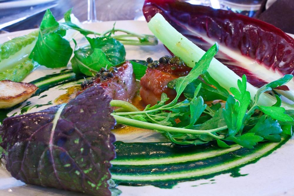 Noma - Lamb and horseradish; Fresh salads and pickled ramson onion
