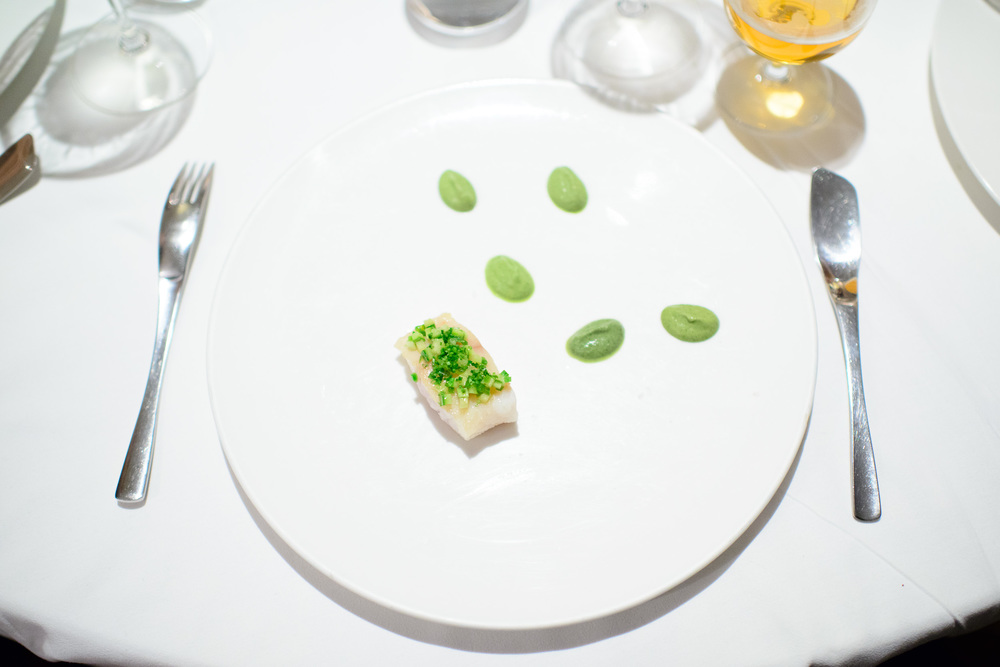 7th Course: Huachinango (snook) with 5 mole verdes: hoja santa,