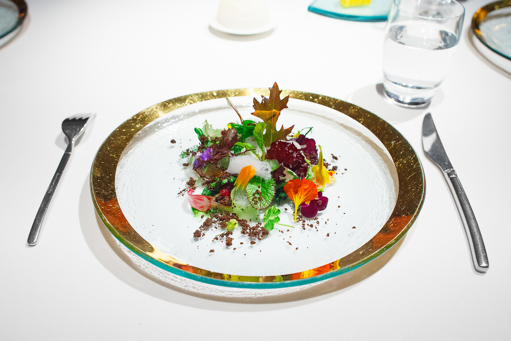 9th Course: Into the vegetable garden