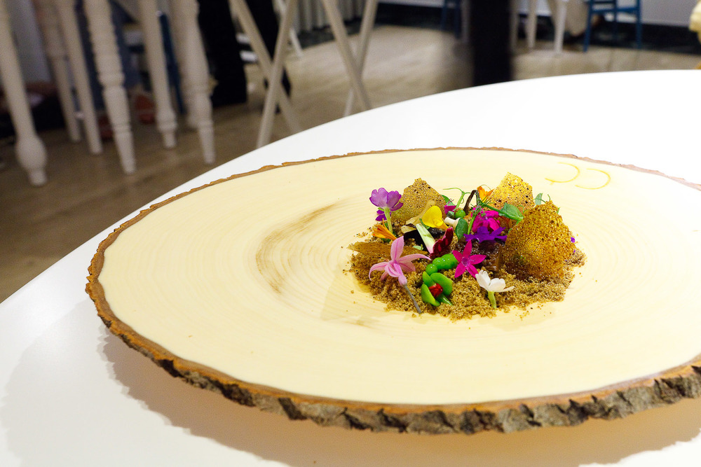 5th Course: The Living Forest