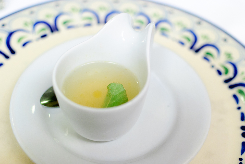 Amuse bouche: caldo de te de limón con quintonil (lemon broth with quintonil)