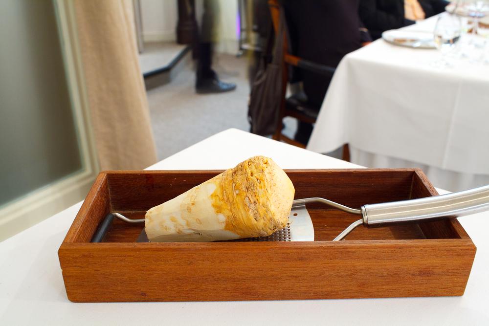 8th Course: Presentation of horseradish