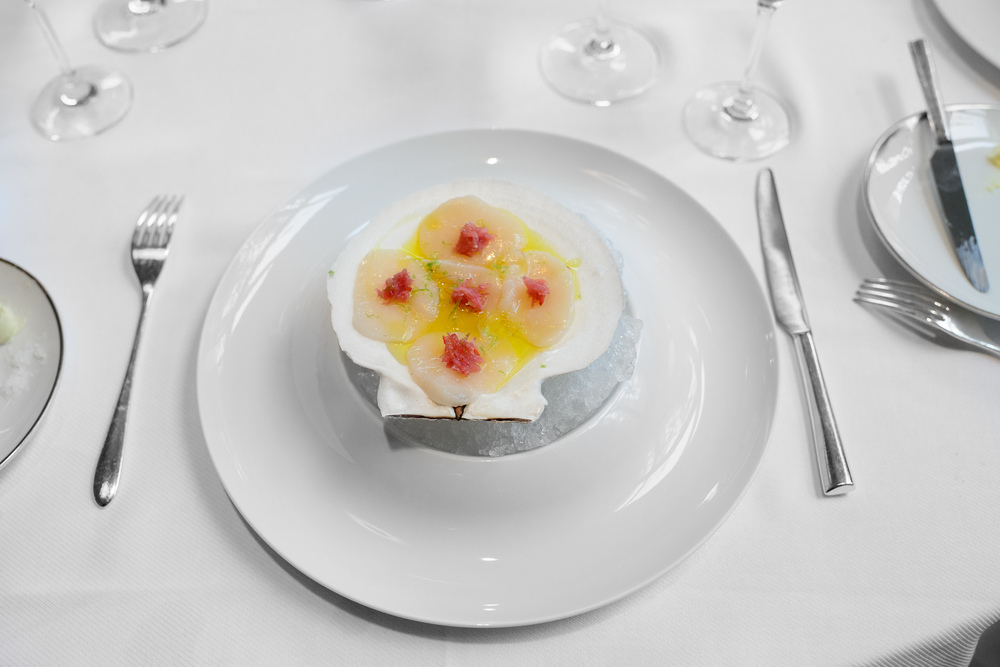 Scallop carpaccio with rhubarb, ginger, and olve oil