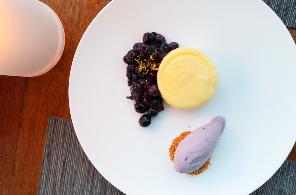 Lemon steamed pudding, blueberries, blueberry ice cream ($11)