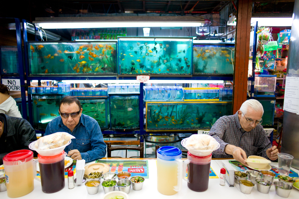 Fresh fish in Mercado Coyoacán.jpg