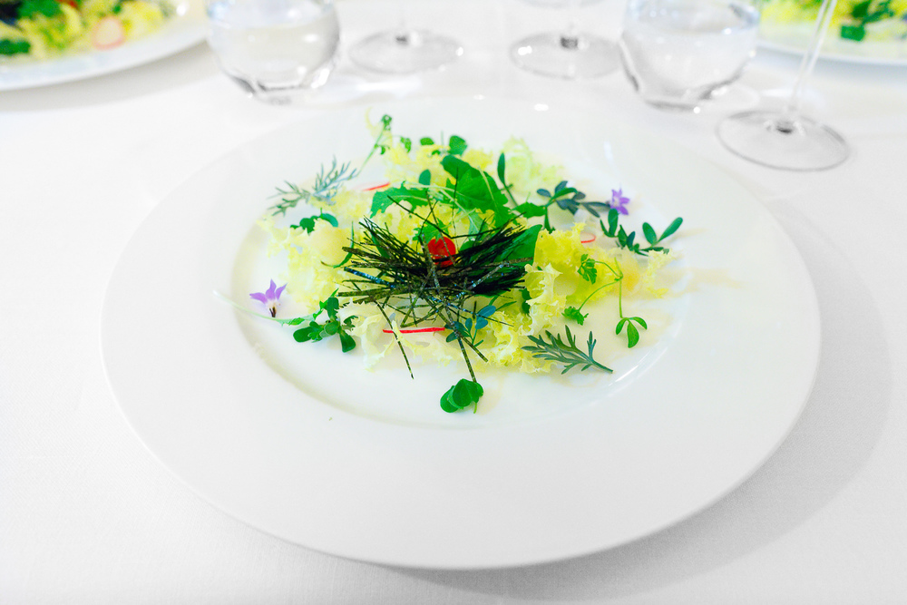 1st Course: Insalata di alghe, erbe aromatiche & radici, side view