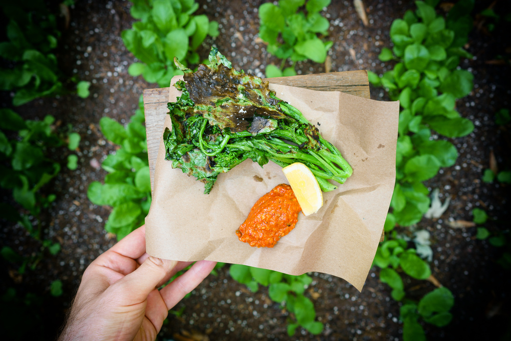 Grilled Broccoli Rabe with Romesco