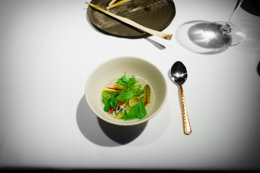 13th Course: Aromatic Ripponlea Broth