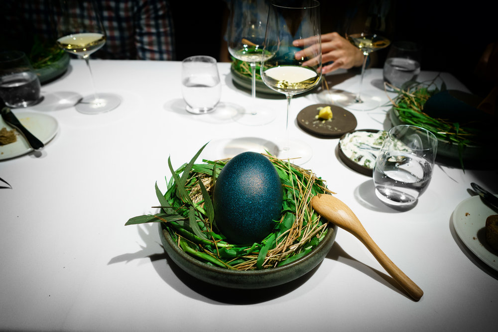 17th Course: Emu's Egg
