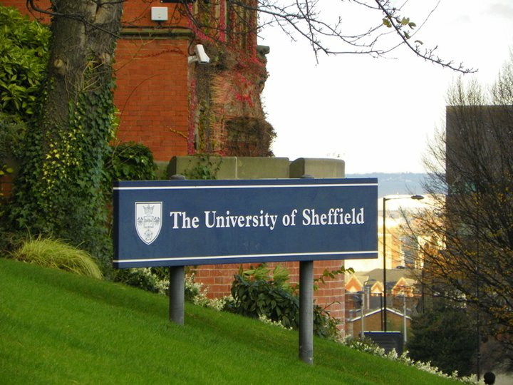This picture was taken at The Uni Of campus in Sheffield, England.