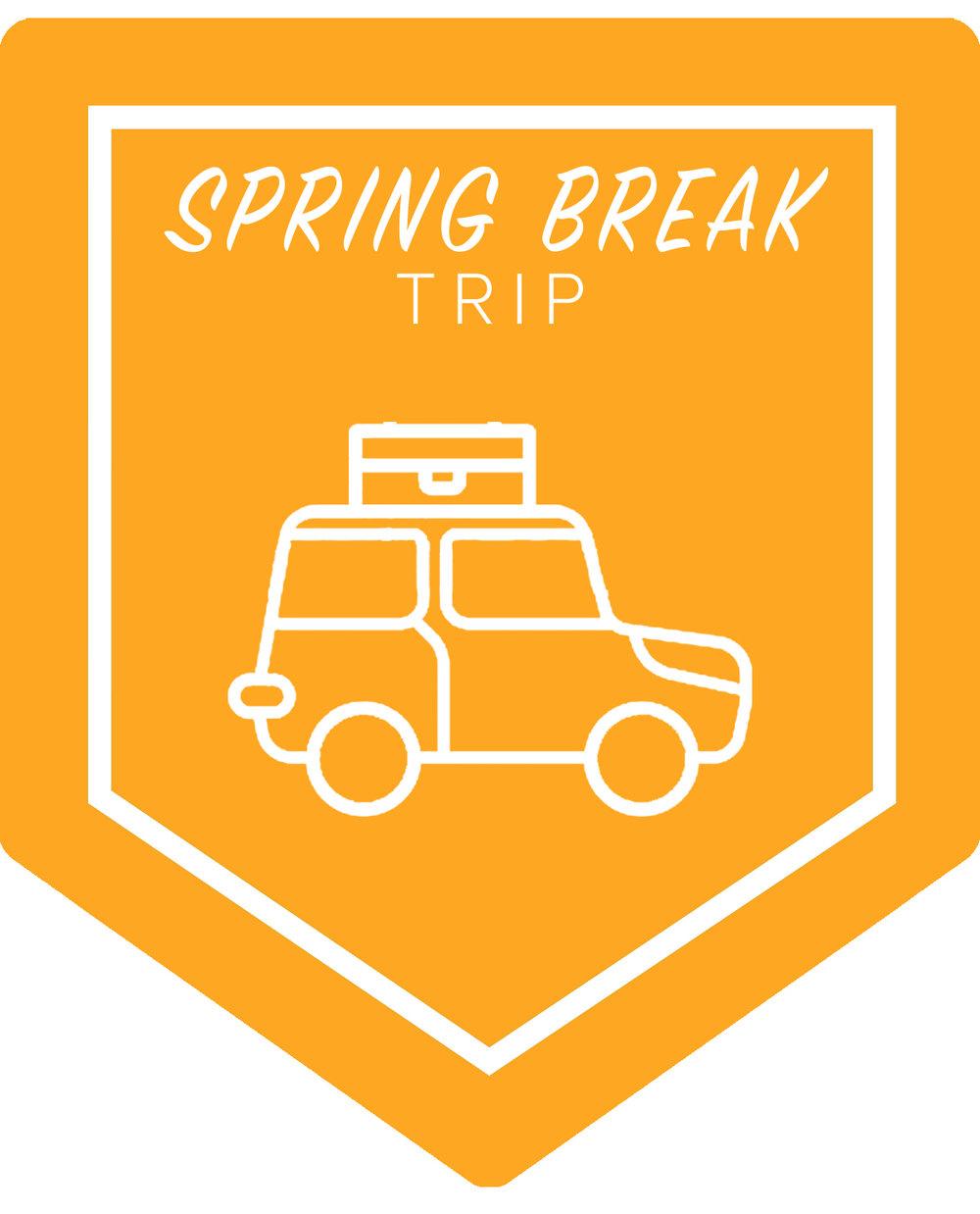 SPRINGBREAK logo_carFINAL.jpg