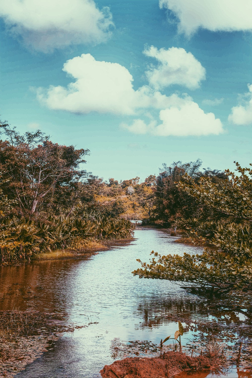 Crossing a bridge, going to a village in Tamatave.