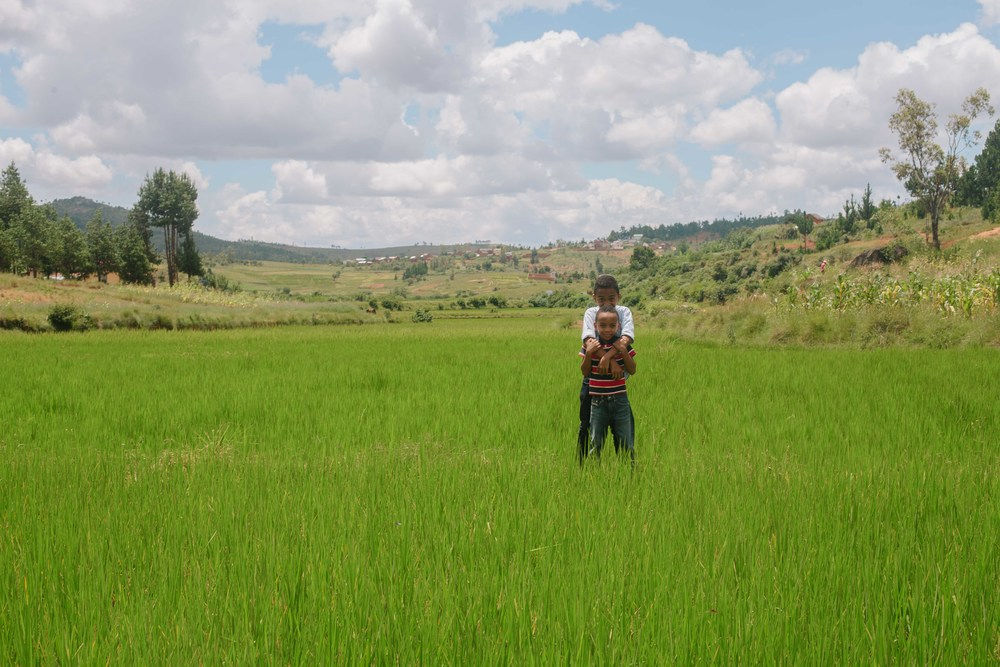 Manovo and Mihary in the rice fields.