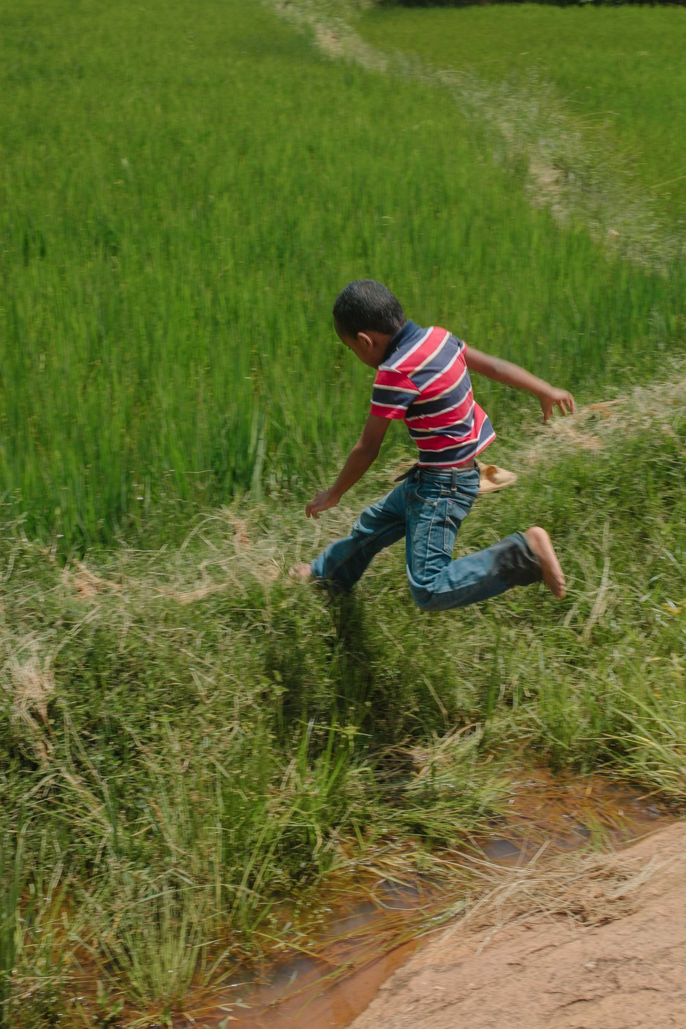 Mihary jumping across the fields.