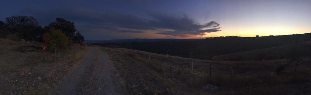 View from their home, up on a mountain, in Paso Robles. Shot on iPhone 6.