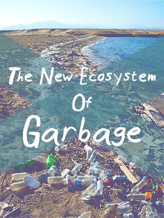 NewGarbage_Cover_336[1].png