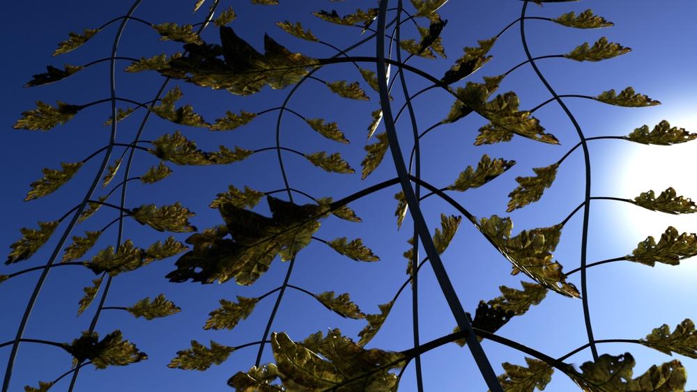 Leaf_R%2526D_4.jpg