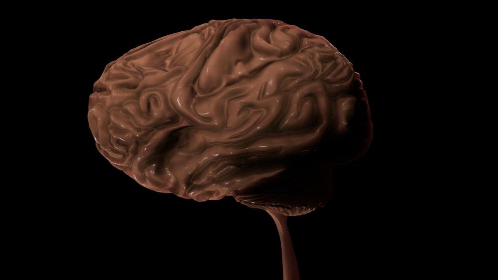 Brain WIP 3.jpeg