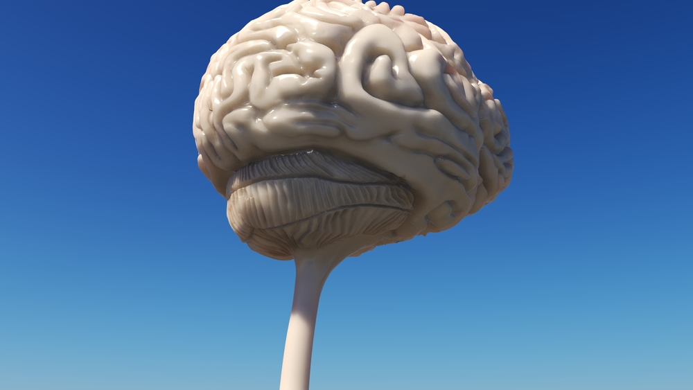 Brain WIP 10.jpeg