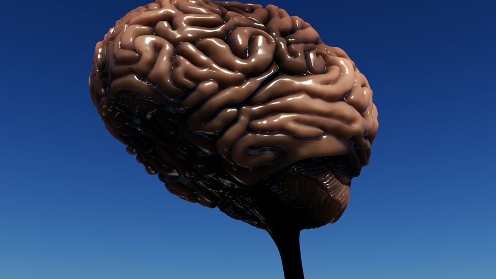 Brain WIP 14.jpeg