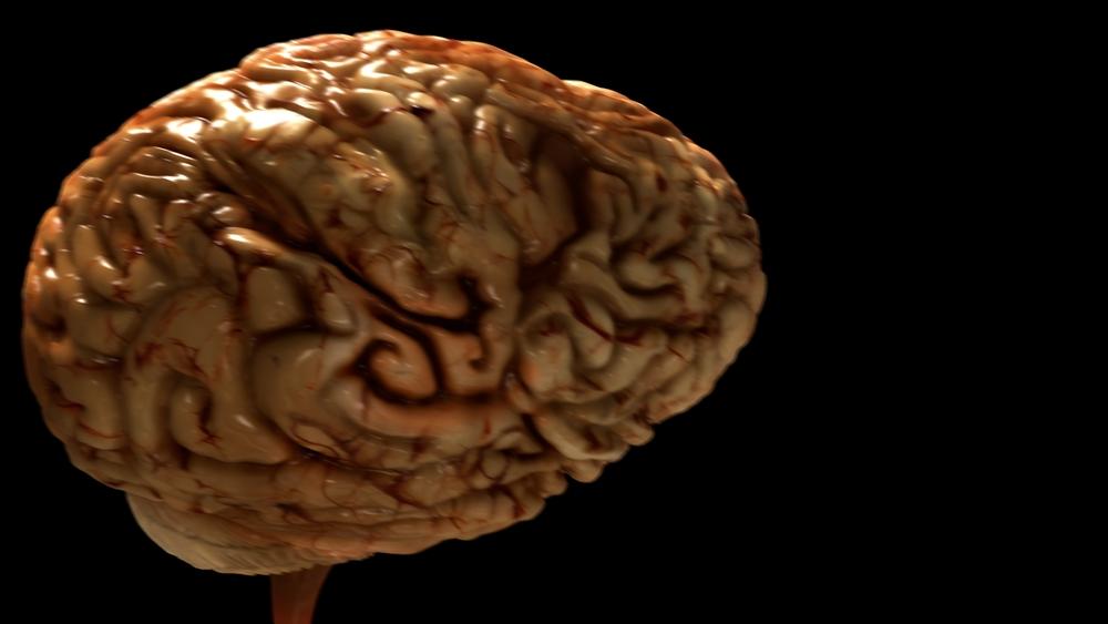 Brain WIP 26.jpeg