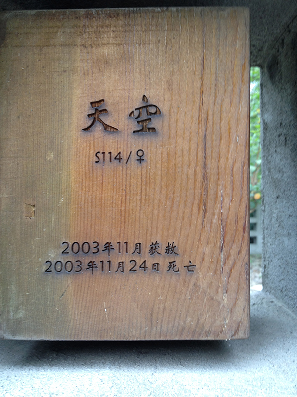 "Chinese side of a memorial for a black bear named ""Sky."""