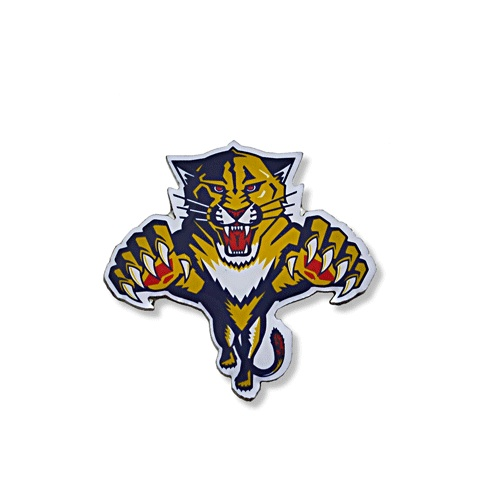 027 Florida Panthers Pin.jpg