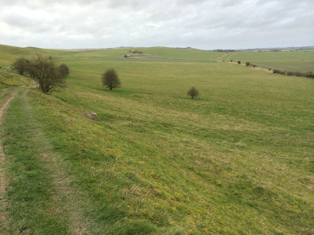 the ridgeway path looking west towards avebury