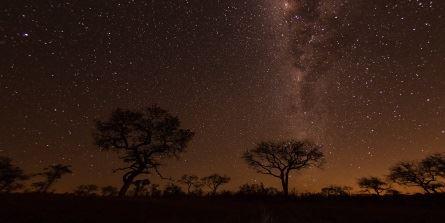 african night sky.jpg