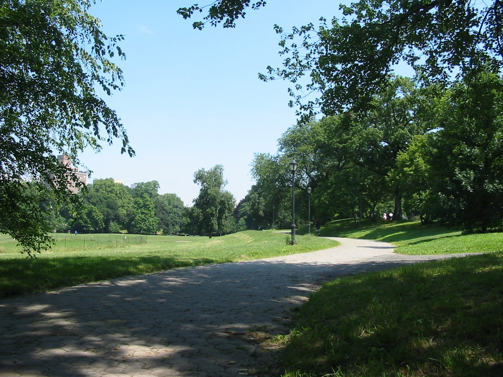 Prospect Park, east path looking north