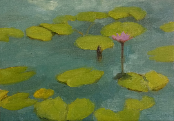 Waterlily sketch on canvas panel 1.jpg