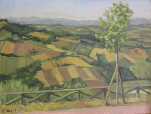 Small scale farms of hilly Umbria are the kind of landscape I love to paint!
